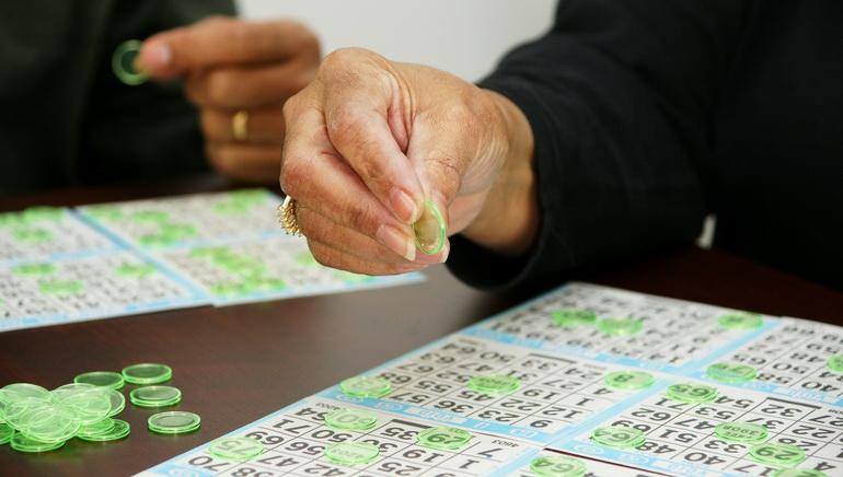 Enter Bingo Kingdom