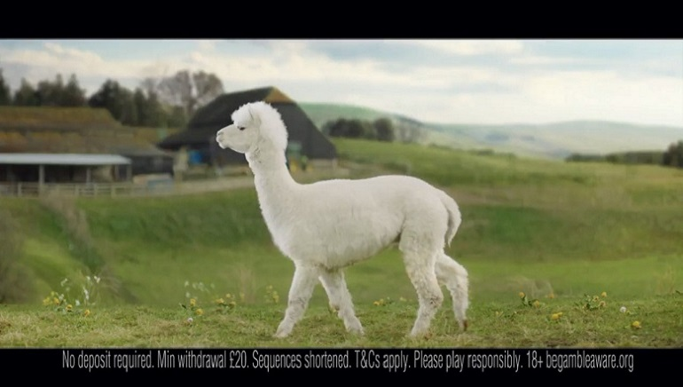 PlayOJO Launches TV Ad Campaign Fronted By A Happy Alpaca